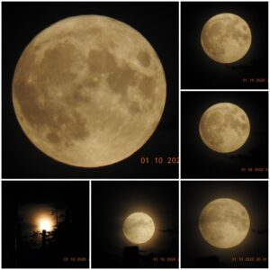Full Moon on 1/10/2020