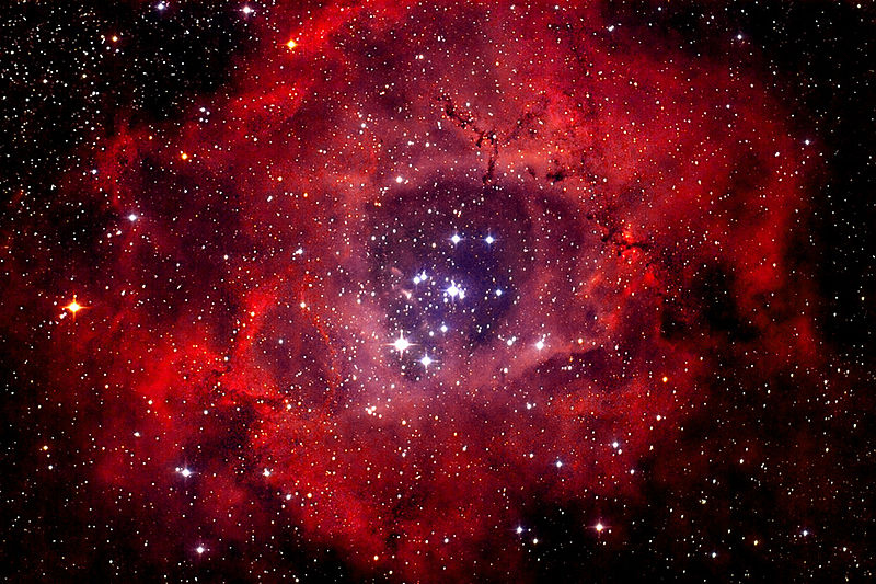Fig.2 The Rosette Nebula as imaged by Andreas Fink, Friedrichsdorf, Germany
